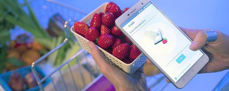 سنسور مولکولی موبایل که توت فرنگی شیرینتر را تشخیص میدهد